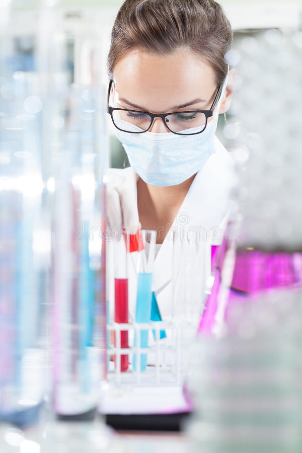Female chemist making experiment. In professional laboratory royalty free stock photography