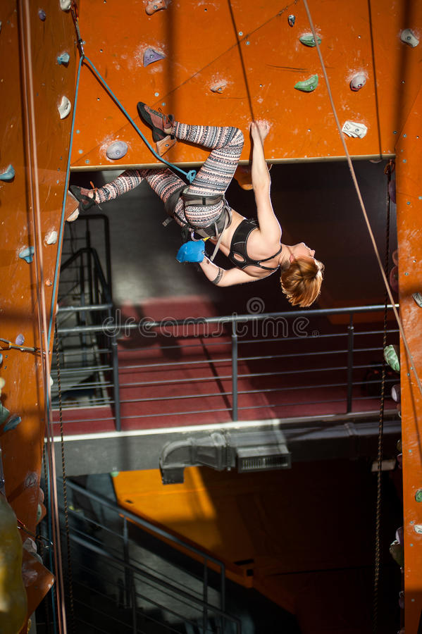 Female climber is climbing up on indoor rock-climbing wall. Athletic woman with special equipment climbs on an indoor rock-climbing wall royalty free stock image