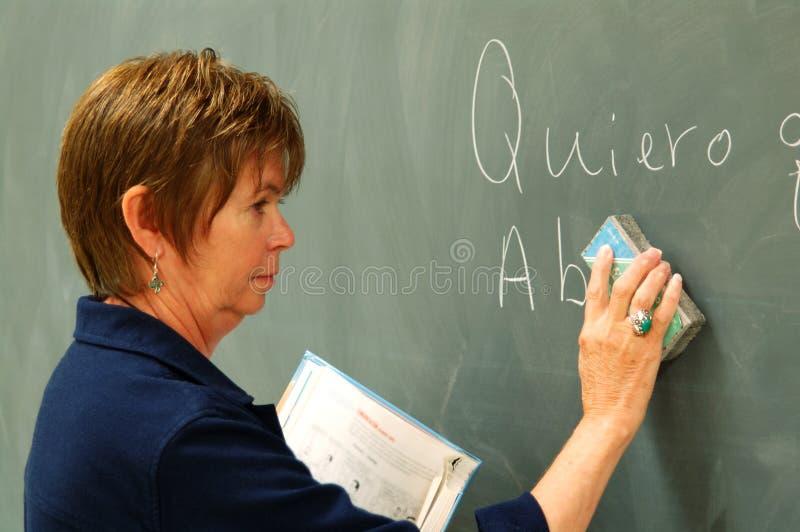 Download Female College Professor stock image. Image of mature - 3098393