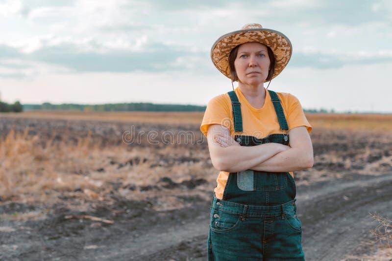 Female corn farmer looking over cornfield royalty free stock photo