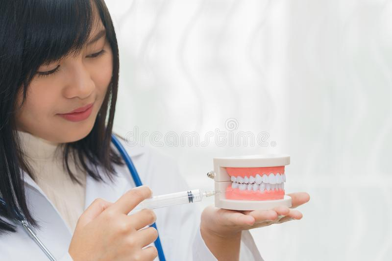 Female dentist demonstrate injecting local anaesthetic at gum wi. Th teeth model royalty free stock photos