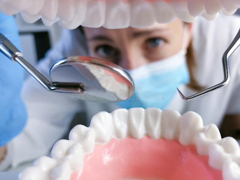 Female dentist holding professional stomatology tool and pointing at the teeth model. Dental hygiene and health concept royalty free stock photo
