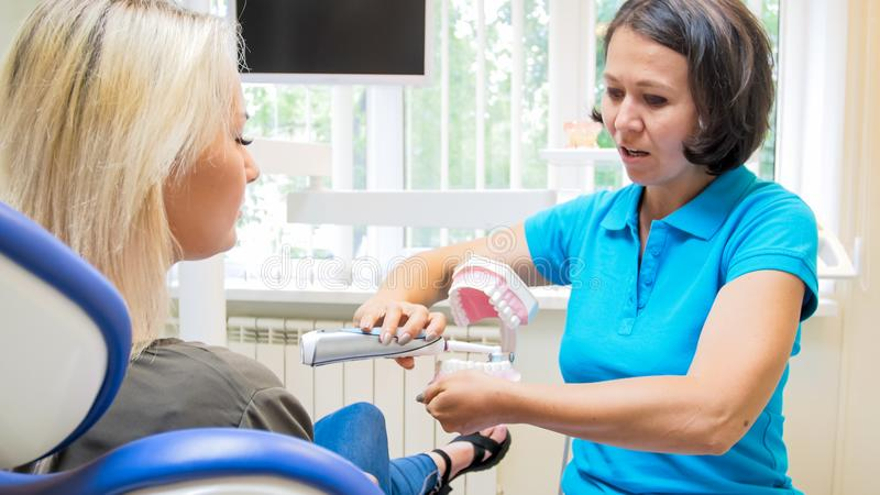 Portrait of female dentist showing her patient how to properly clean teeth royalty free stock photo