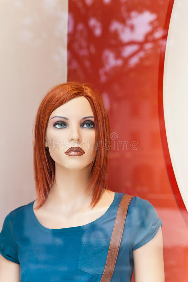 Download Female display dummy stock image. Image of consumerism - 25602257