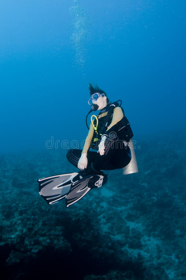 Download Female diver hovering stock photo. Image of sports, blue - 17969246