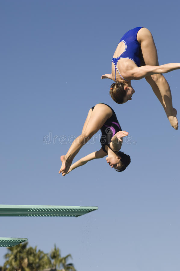 Female Diving From Springboard royalty free stock images
