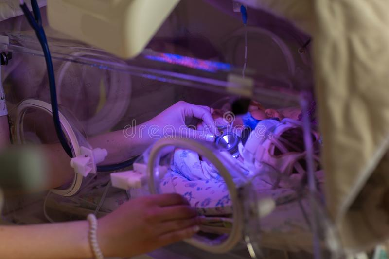 Female doctor examining newborn baby in incubator. Close up female hands with a stethoscope stock photos