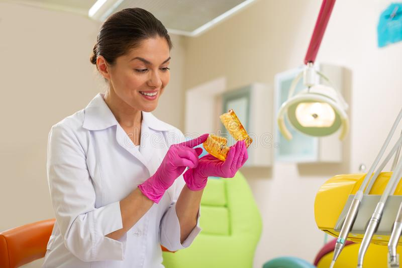 Female doctor looking at an artificial teeth model. Dentist office. Attractive middle-aged female doctor looking at an artificial teeth model while sitting in a stock photography