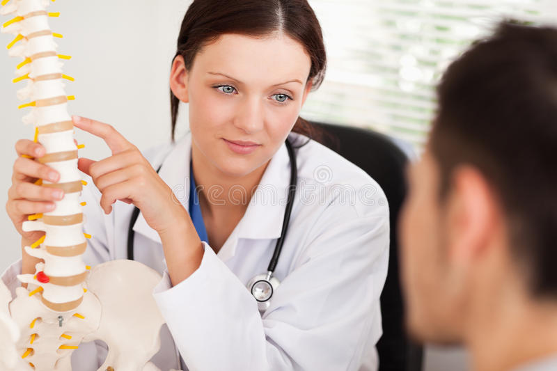 Female doctor showing patient spine stock image
