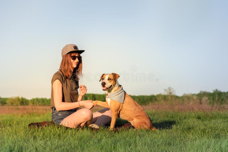 Female dog owner and trained staffordshire terrier giving paw. At lawn. Beautiful young woman in casual clothes and her puppy in bandana resting on green grass royalty free stock images