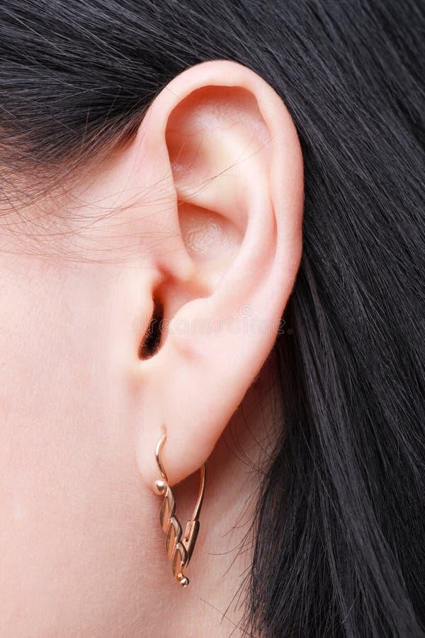 Download Female ear stock image. Image of listen, earring, beauty - 9058147