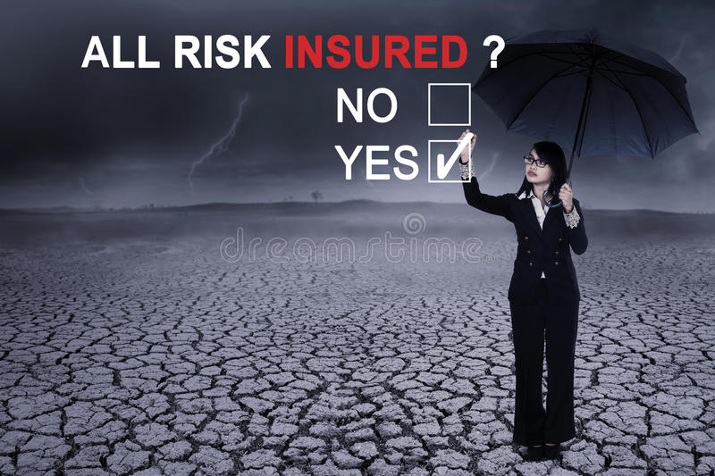 Female entrepreneur with text of all risk insured royalty free stock photos