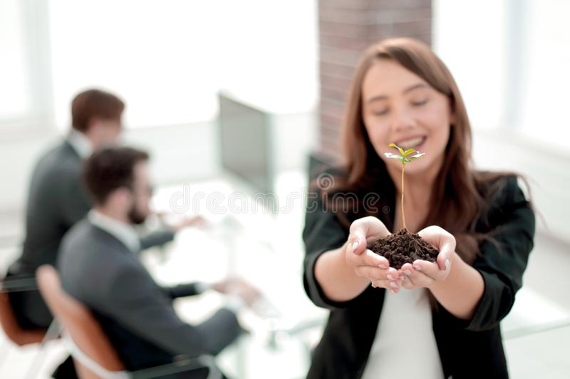 Female environmentalist showing fresh sprout. Close up. female environmentalist showing fresh sprout .photo with copy space royalty free stock photo