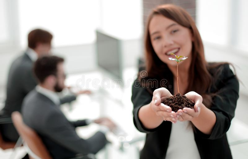 Female environmentalist showing fresh sprout. Close up. female environmentalist showing fresh sprout .photo with copy space royalty free stock image