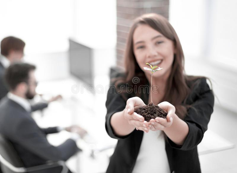 Female environmentalist showing fresh sprout. Close up. female environmentalist showing fresh sprout .photo with copy space stock photo