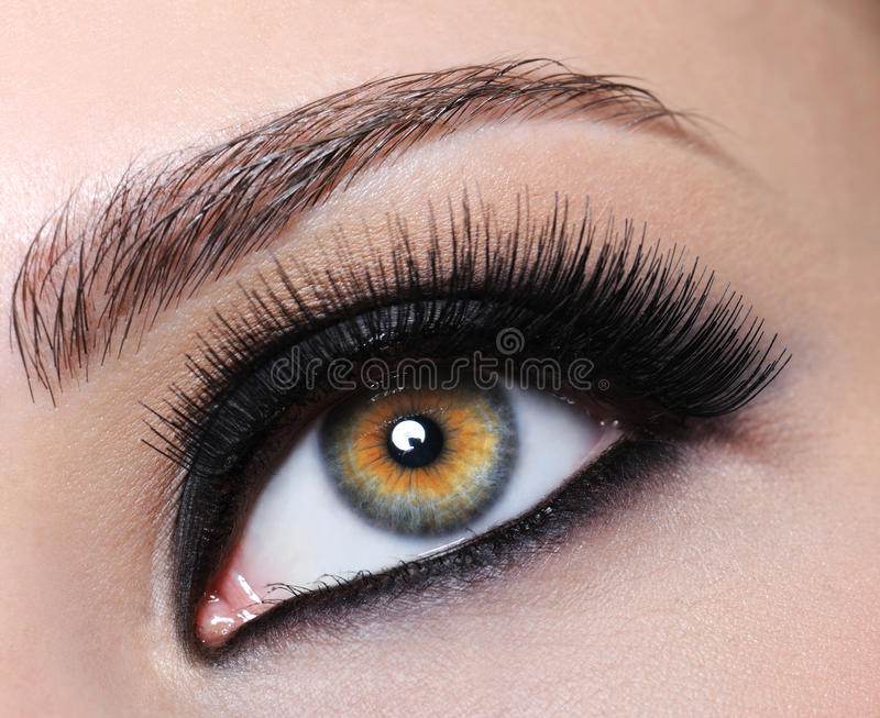 Download Female Eye With Black Long Eyelashes Stock Image - Image of female, brown: 10282779