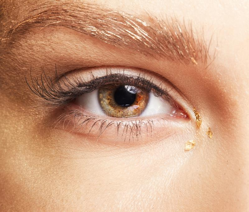 Female eye. Closeup macro beauty portrait of young woman face.  stock images
