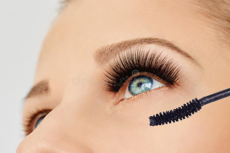 Female eye with extreme long eyelashes and brush of mascara. Make-up, cosmetics, beauty stock photography