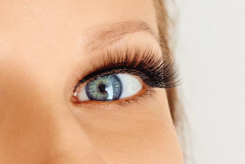 Female eye with extreme long false eye lashes. Eyelash extensions, make-up, cosmetics, beauty stock photo