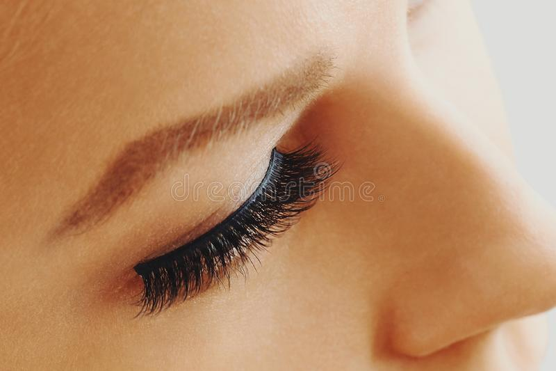 Female eye with extreme long false eyelashes. Eyelash extensions, make-up, cosmetics, beauty and skin care. Close up, macro stock image