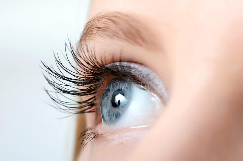 Female eye with long eyelashes royalty free stock photo