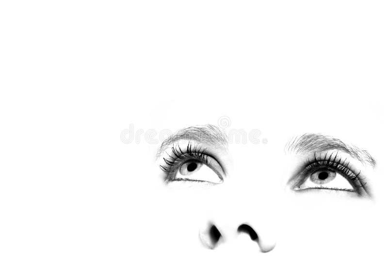 Female eyes stock image