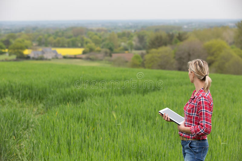 Female farmer working with electronics royalty free stock images