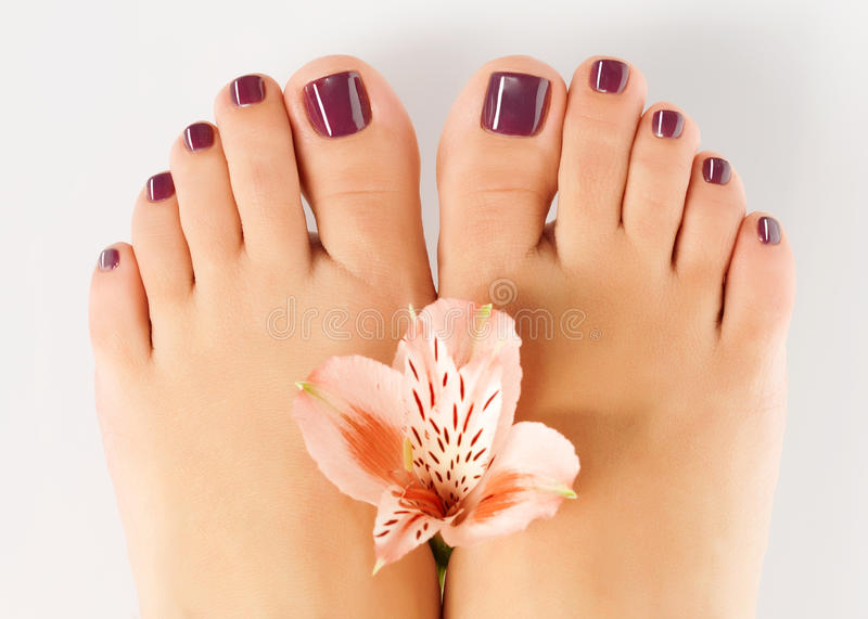 Download Female Feet With Beautiful Pedicure After Spa Procedure Stock Image - Image: 28806747