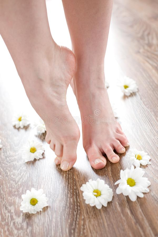 Female feet on the dark floorboard stock photography