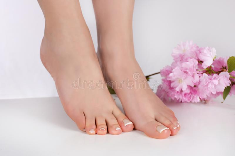 Female feet with french nails polish in beauty salon and pink flower isolated on white background. Beautiful young gently woman feet with french nails polish in royalty free stock images