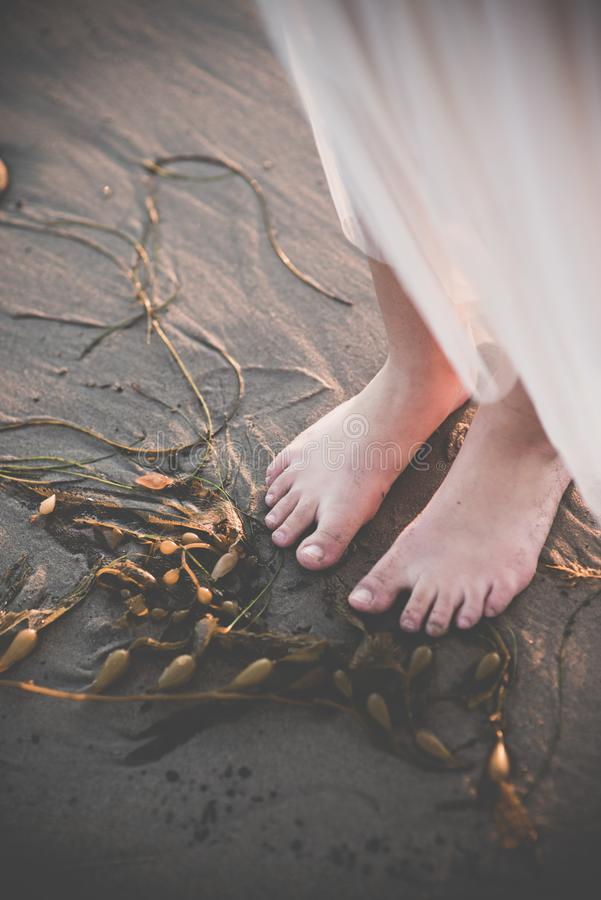 Female feet near seaweed in the sand stock photo