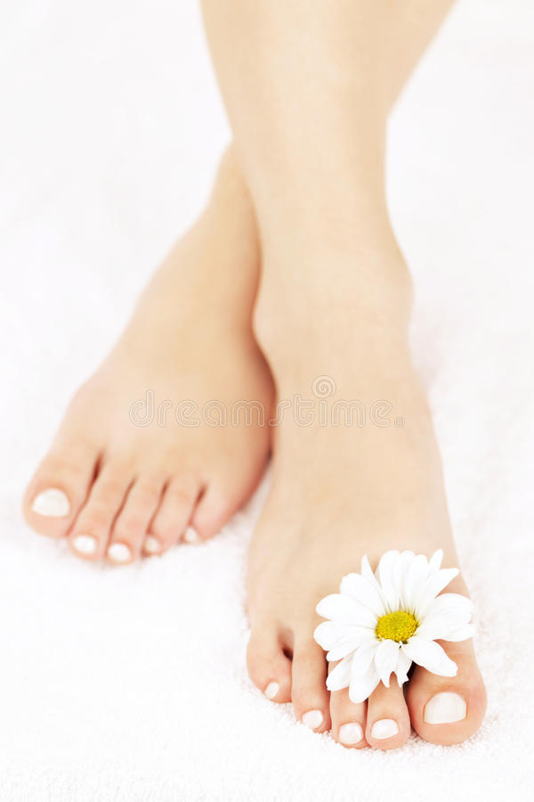 Download Female feet with pedicure stock image. Image of carefree - 21902393