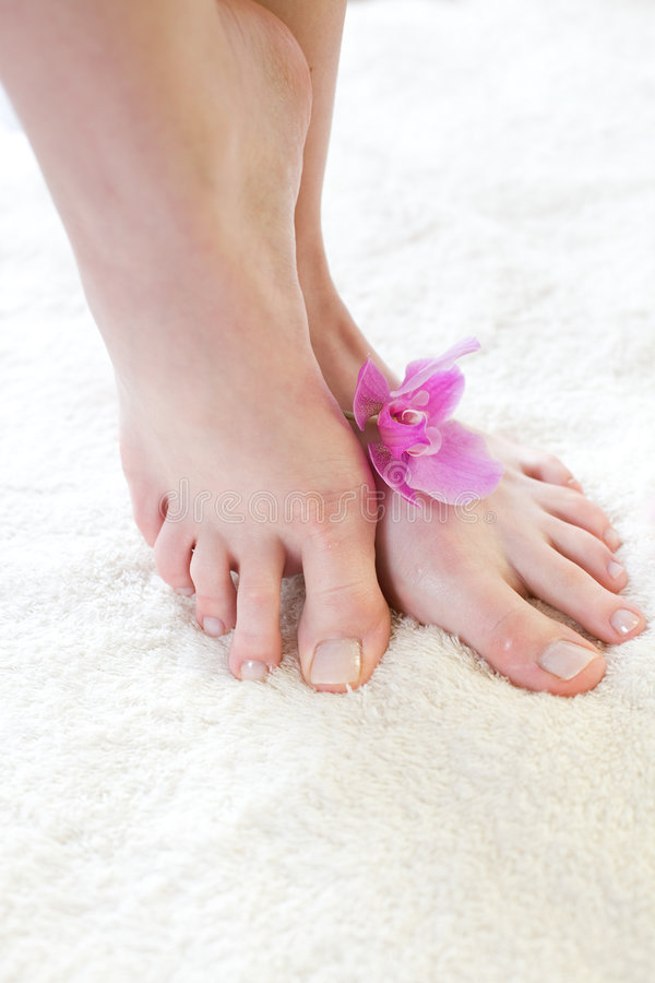 Female feet with pink orchid. Spa treatment / Beautiful female feet with pink orchid stock image