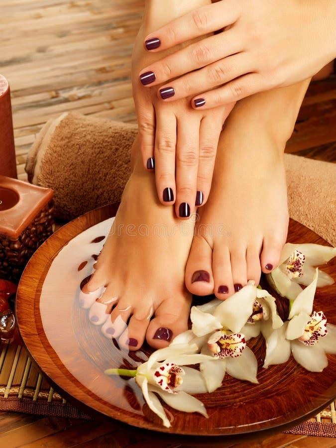 Download Female Feet At Spa Salon On Pedicure Procedure Stock Image - Image: 28806703