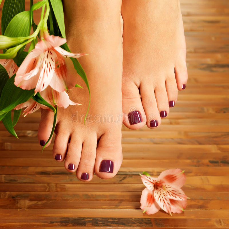 Download Female Feet At Spa Salon On Pedicure Procedure Stock Image - Image: 28806735