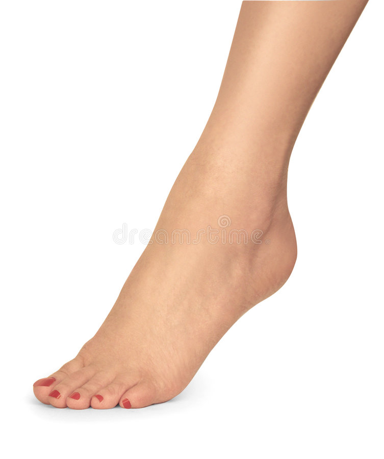 Female foot royalty free stock image