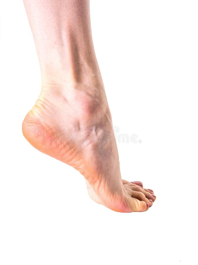 Female foot without retouch on white background stock photography