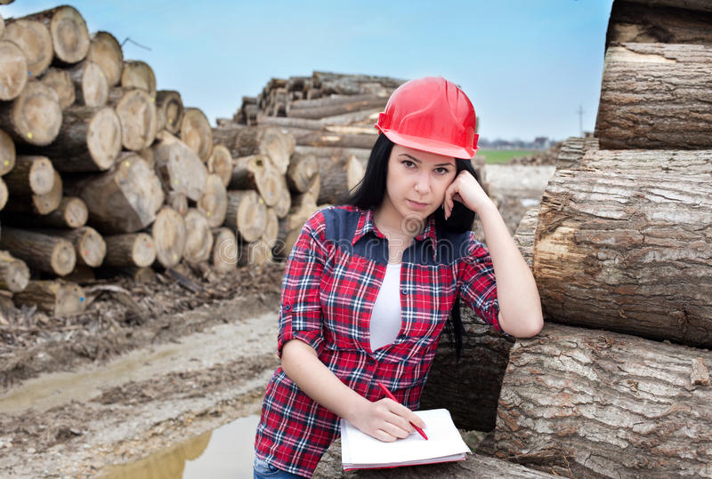 Female forest engineer beside logs. Young female lumber engineer standing beside cut logs and writing notes royalty free stock photos