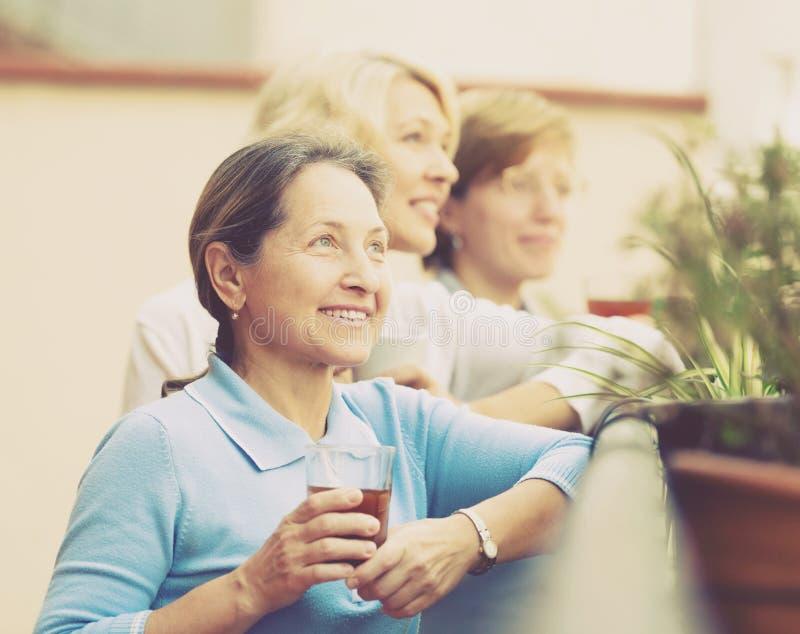 Female friends on summer terrace. Portrait of smiling mature female friends on summer terrace. Focus on brunette female stock image