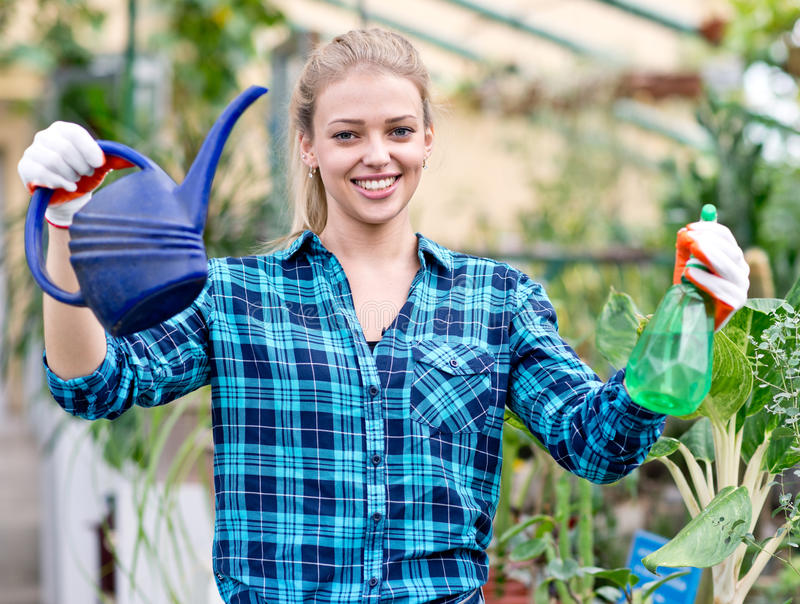 Female gardener in greenhouse royalty free stock images