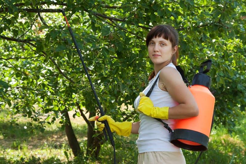 Female gardener with knapsack garden spray. Female gardener working in yard with knapsack garden spray royalty free stock photo