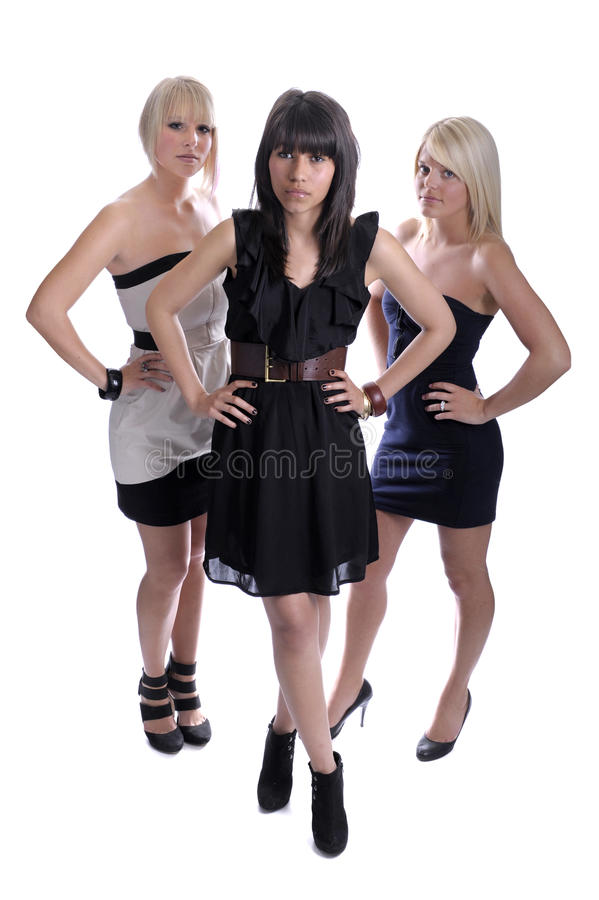 Download Female glamour friends stock image. Image of friends - 19612913