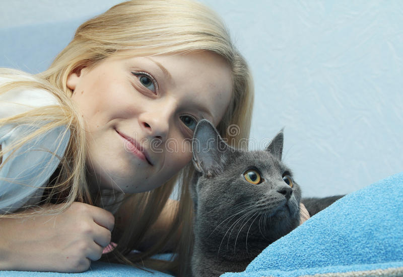 Download Female with grey cat stock image. Image of beauty, face - 22605023