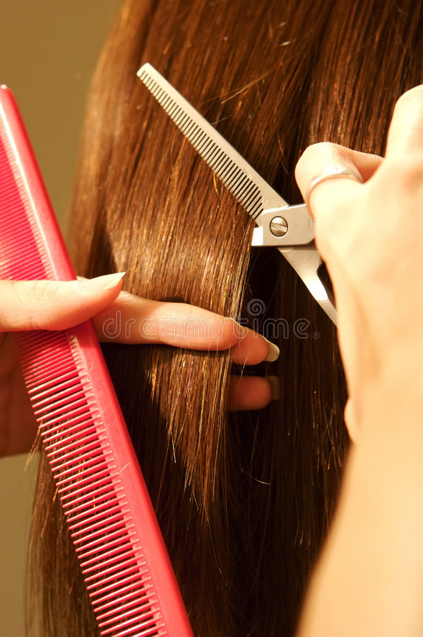 Female hair cutting at a salon stock images