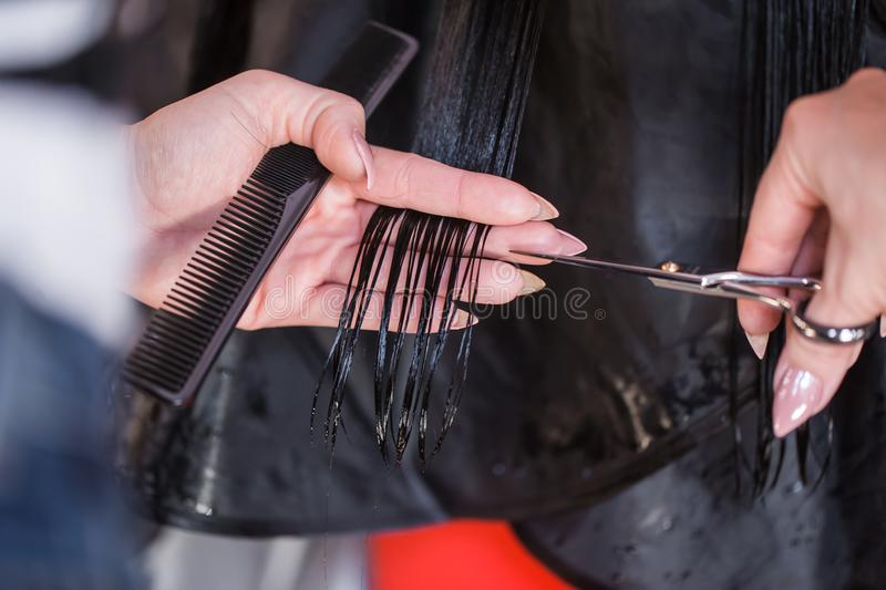 Female hairdresser hold in hand comb and scissors close up. Keratin restoration, latest trend, instrument store royalty free stock photos