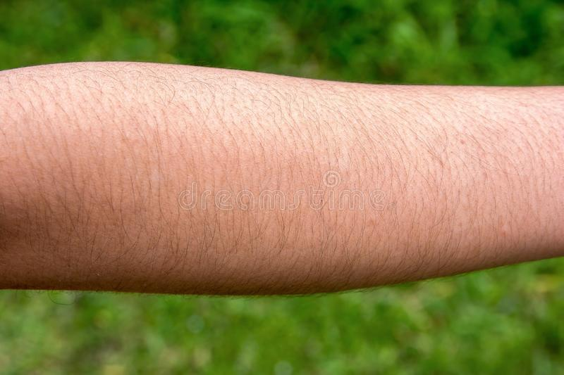 Female with hairy arm. Background royalty free stock image