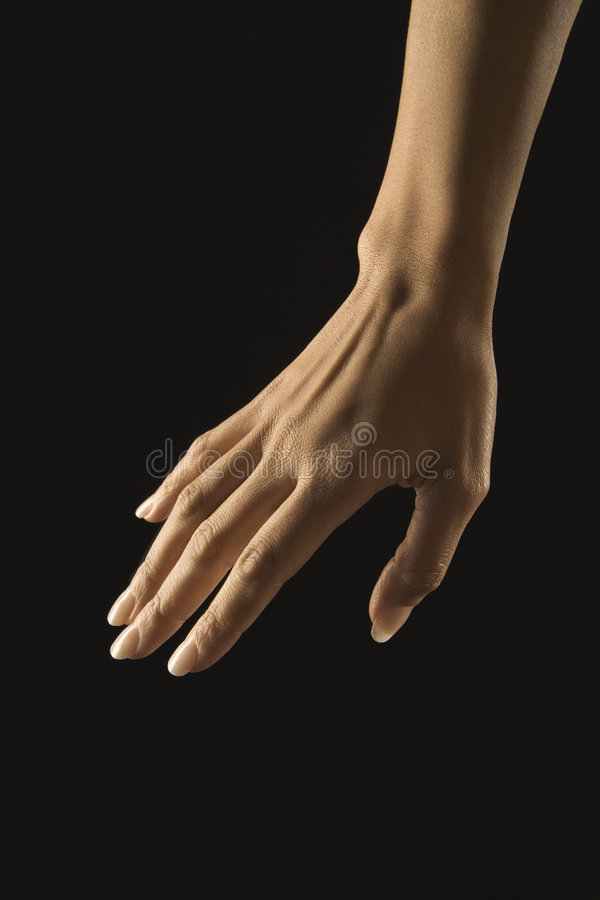 Female hand. royalty free stock images