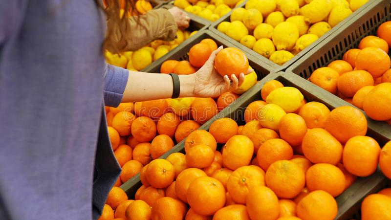 Female hand chooses citrus oranges and lemons in the store royalty free stock photos