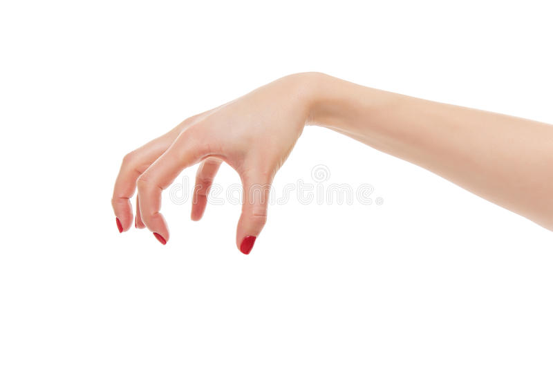 Female hand evil. Isolated on white background royalty free stock photography