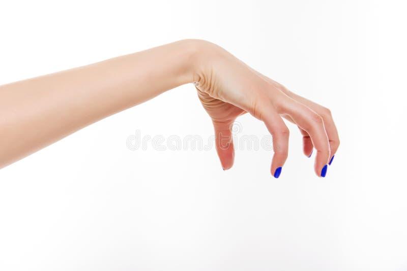 Female hand evil. Isolated on white background royalty free stock photo